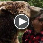 Un Orso Grizzly che gioca e vive con un uomo [VIDEO]