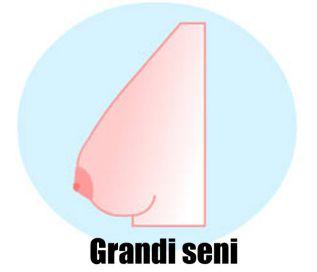 Grandi seni