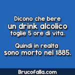 Dicono che bere un drink alcolico toglie 5 ore di vita
