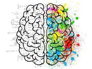 Merve Emre per TED: Come funzionano i test della personalità?
